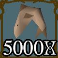 5000 Sharks